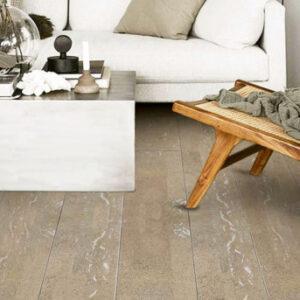 Narrow Plank 4v